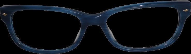 FOSSIL FOS7009 38Ι BLUE HORN